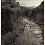 Zion NP_10